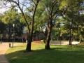 Метален парков кош